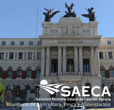 Noticias SAECA