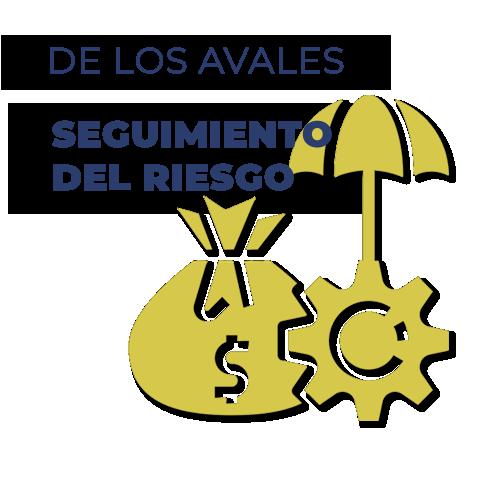 Seguimiento del Riesgo Avales SAECA