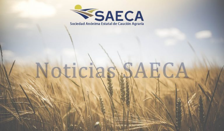 Noticia SAECA
