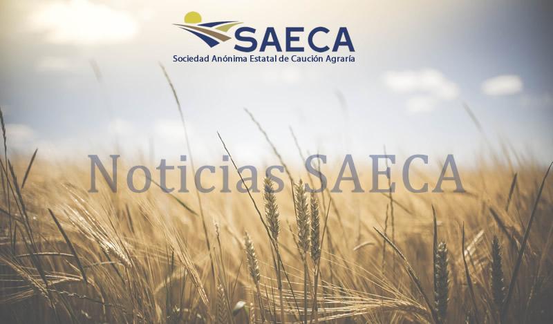 Noticia SAECA