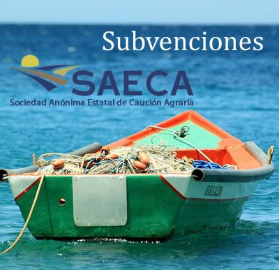 Subvenciones SAECA