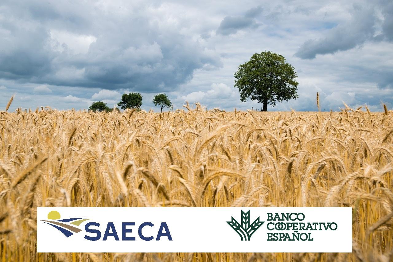 SAECA y el Banco Cooperativo Español suscriben un acuerdo para facilitar el acceso al crédito al sector primario
