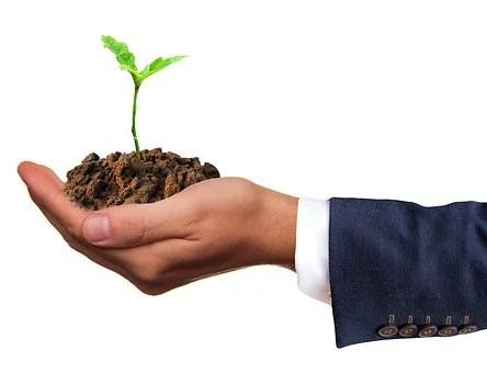 SAECA y CERSA suscriben un nuevo contrato de reafianzamiento enmarcado en el programa de avales para PYME emprendedores 2020